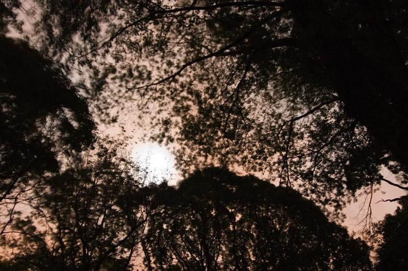 moon_shine.jpg