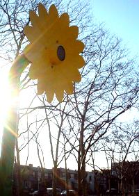 sun_showers.jpg